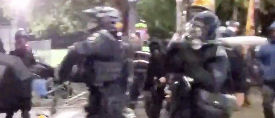 Protest strikes SPD officer with bat/SPD Blotter