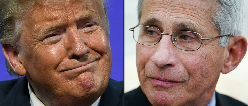 "This combination of pictures created on July 13, 2020 shows US President Donald Trump in Phoenix, Arizona, June 23, 2020 and Anthony Fauci , director of the National Institute of Allergy and Infectious Diseases in Washington, DC on April 29, 2020. - As Florida reports a record surge of deaths due to COVID-19, President Trump called out Dr. Fauci on Fox News for making ""a lot of mistakes"", while The White House stated ""several White House officials are concerned about the number of times Dr. Fauci has been wrong on things"". Fauci, for his part, has contradicted the President by saying that ""the country is not doing well in comparison to other countries handling of the virus"". (Photo by SAUL LOEB,MANDEL NGAN/AFP via Getty Images)"