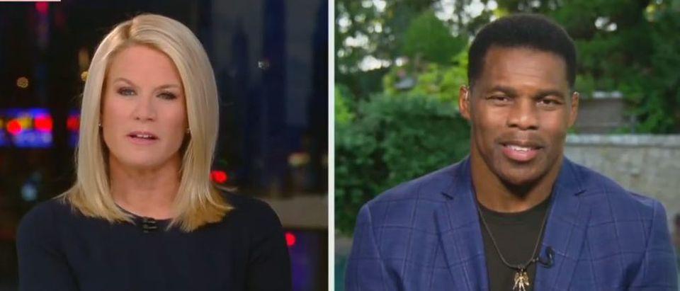 Herschel Walker blasts reparations (Fox News screengrab)