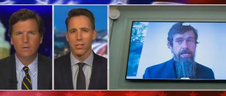 Josh Hawley rips Big Tech for speech suppression (Fox News screengrab)