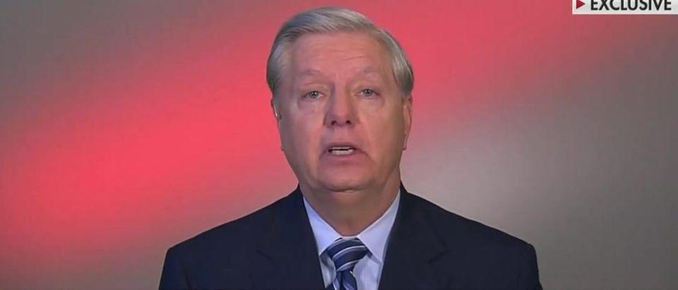 Lindsey Graham warns of 'parade of horribles' if Democrats win (Fox News screengrab)