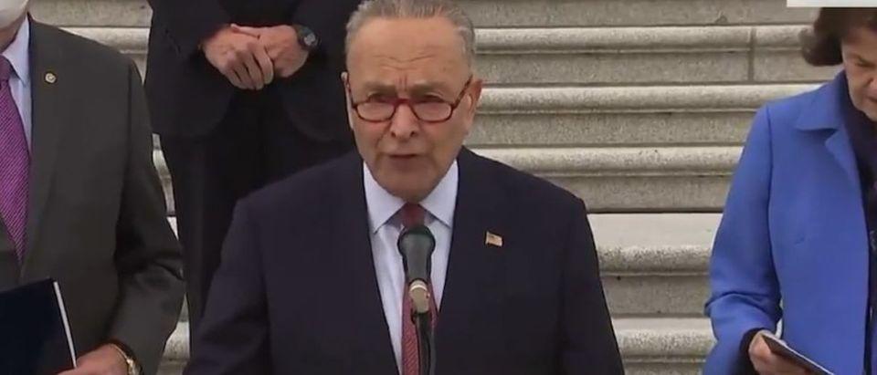 Schumer_Senate Dems_Captiol Steps_ABC News_Screen Shot.jpg