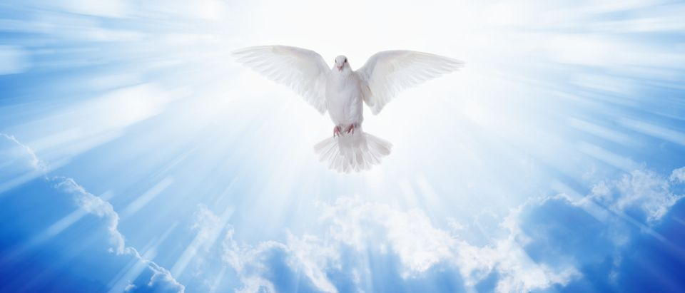 Christian Symbol of Holy Spirit by IgorZh. Shutterstock
