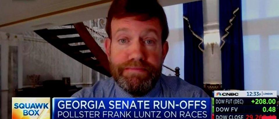 Frank Luntz discusses Georgia elections (CNBC screengrab)
