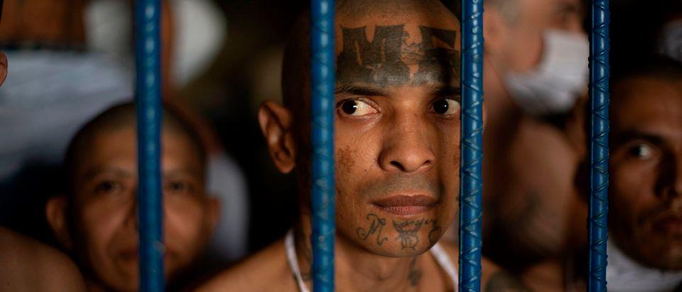 EL SALVADOR-PRISON-GANGS-SEARCH