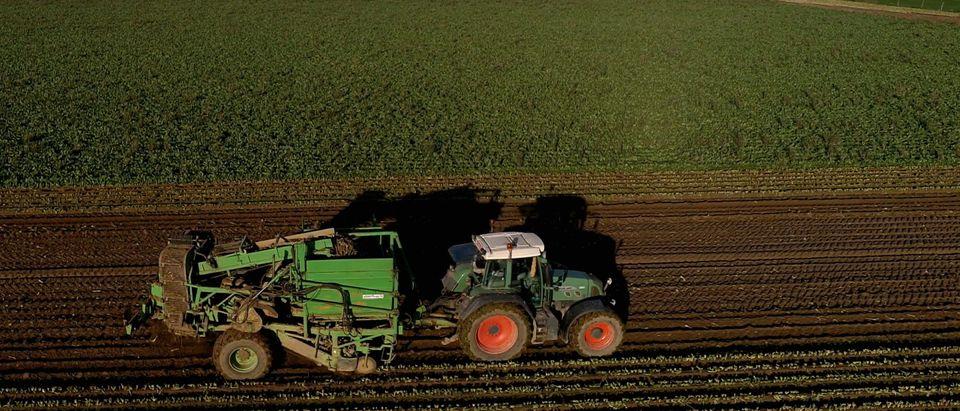 September Trade Deficit Soybean Farmers