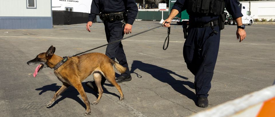 A California Highway Patrol officer (L) walks with United States Coast Guard (USCG) Explosive Detection K9 Team member Anthony Ross (R) and K9 dog Chiquita through a secure entrance area at the Rose Bowl in Pasadena, California December 31, 2013. REUTERS/Jonathan Alcorn (Note: The dog pictured is not the dog referenced in the story)