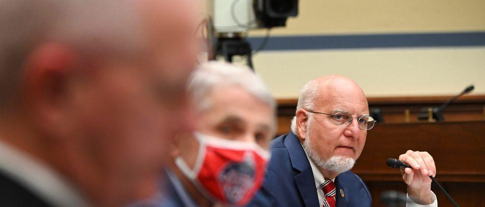 Fauci testifies before coronavirus panel