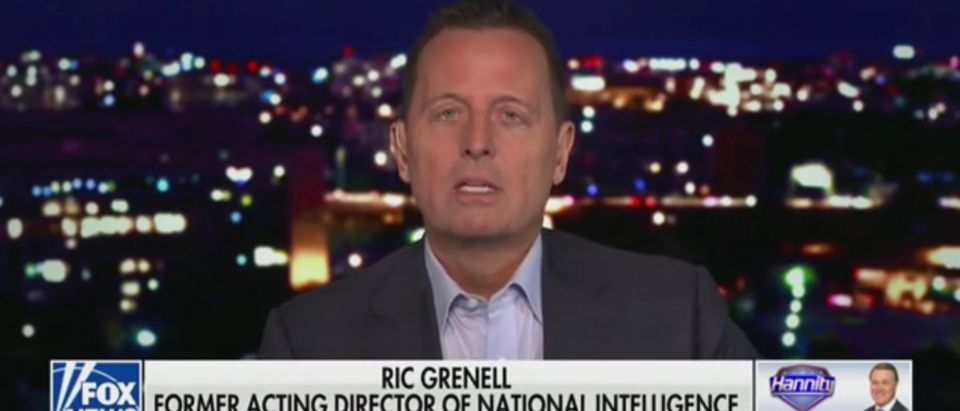 Former Acting Director of National Intelligence Ric Grenell