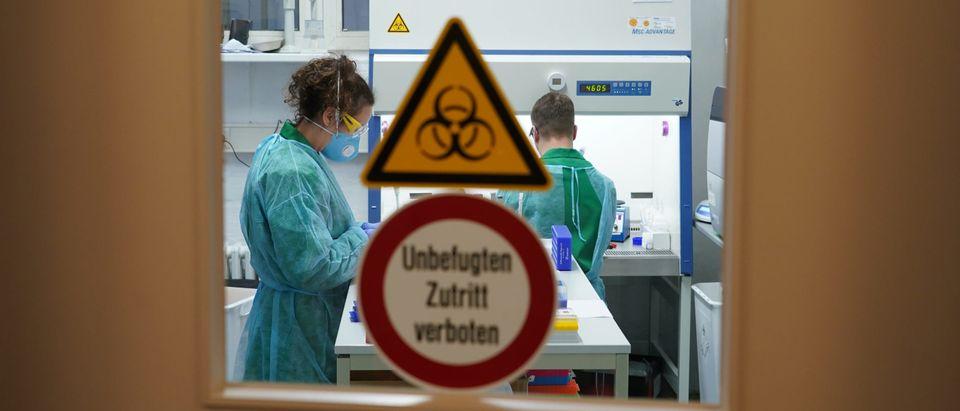 Germany To Expand Coronavirus Testing Capacity