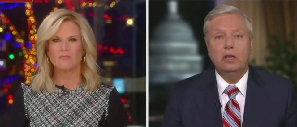 Lindsey Graham Issues Clarion Call To Georgia Governor 'He Needs To Change The Law Before It's Too Late' (Fox News screengrab)