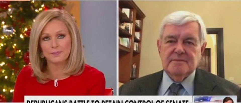 Newt Gingrich says Perdue, Loeffler need direct payments to pass to win (Fox News screengrab)