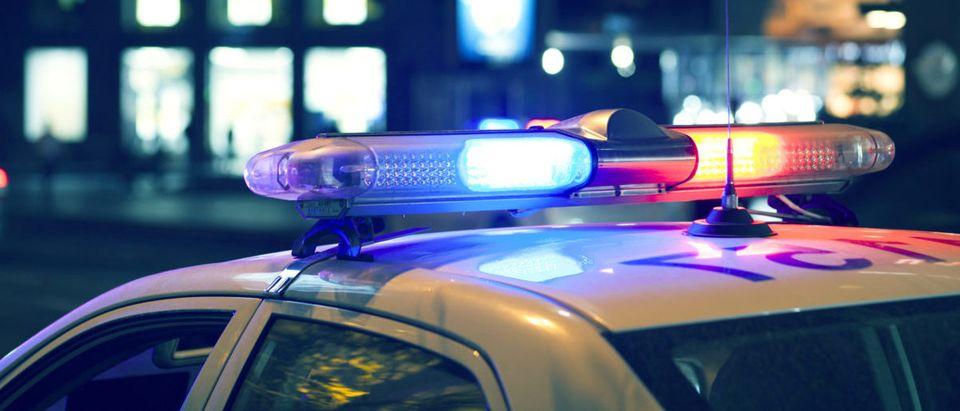 Police Lights (Credit: Shutterstock/Tiko Aramyan)
