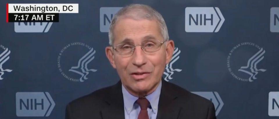 Anthony Fauci (CNN)