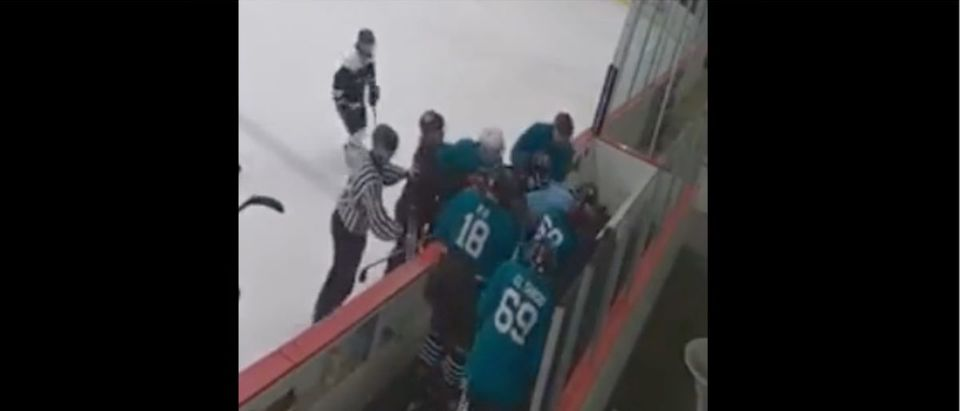Beer League Fight (Credit: Screenshot/Streamable Video https://streamable.com/2behw5)