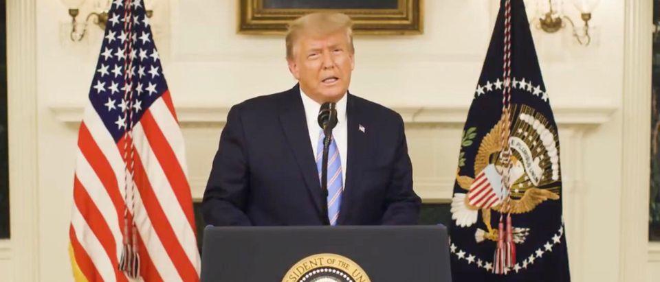 President Donald Trump addresses the nation. (Screenshot/Twitter/Donald Trump)
