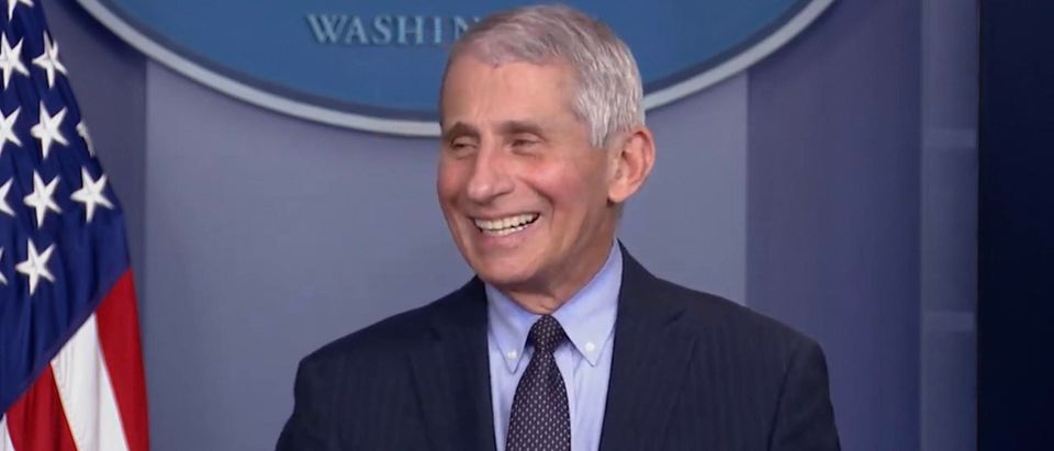 Dr. Anthony Fauci. (Screenshot/YouTube/Fox Business)