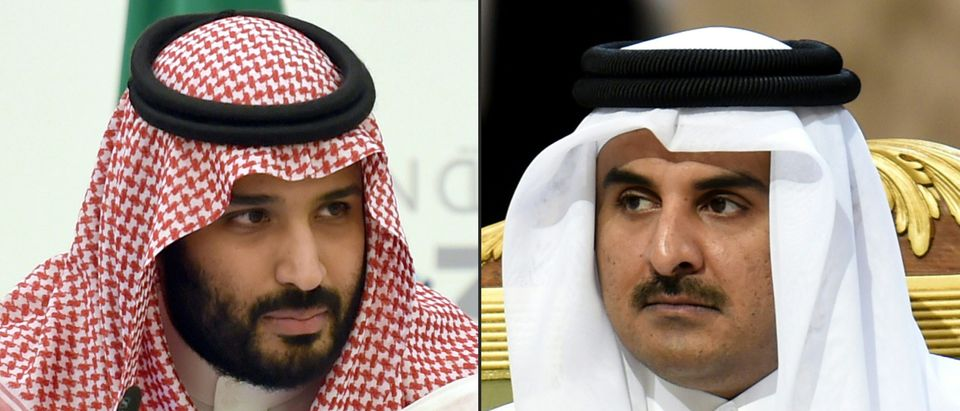 Saudi Arabia Crown Prince and Emir of Qatar