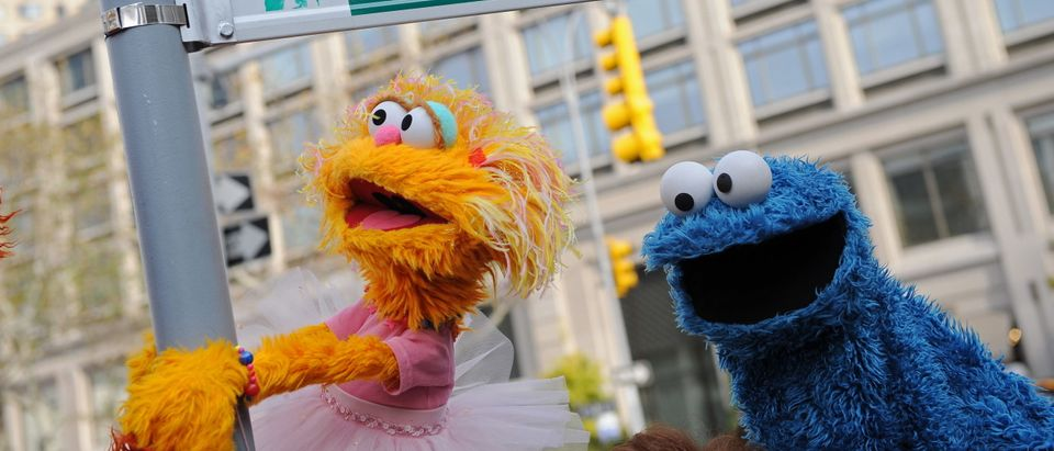 Sesame Street puppet charactors Zoe (L)