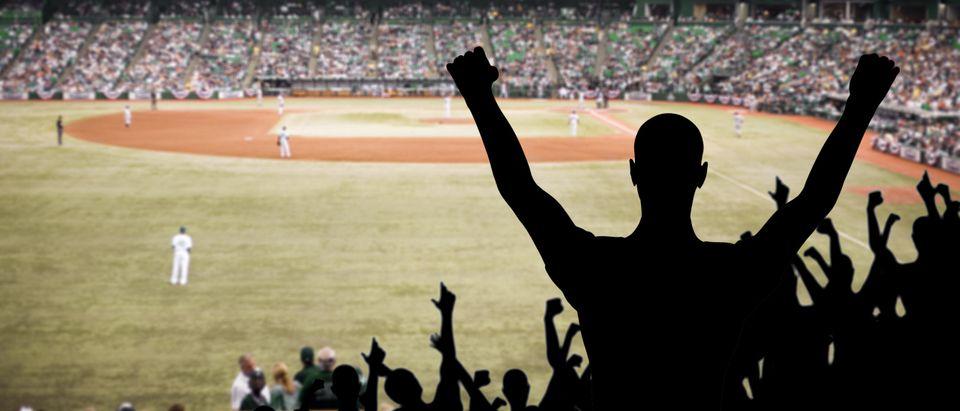 MLB Game Photo