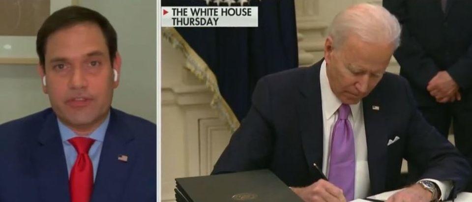 Marco Rubio talks about Joe Biden's policies (Fox News screengrab)