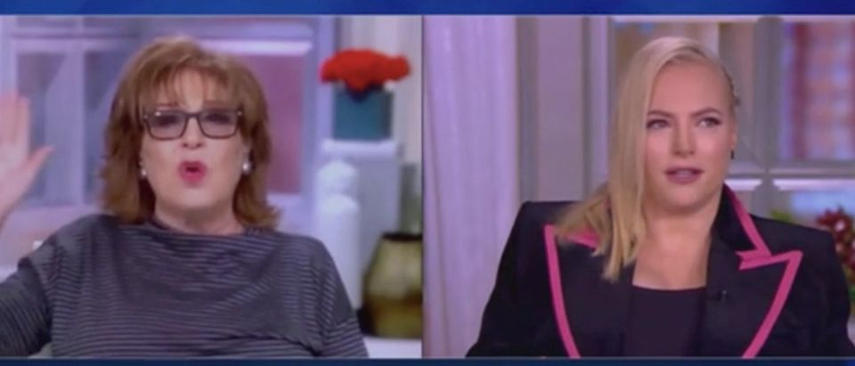 "Joy Behar and Meghan McCain appear on ""The View."" Screenshot/ABC"