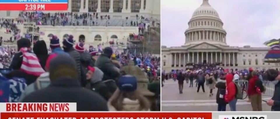 Protests at the Capitol (Screenshot/MSNBC)
