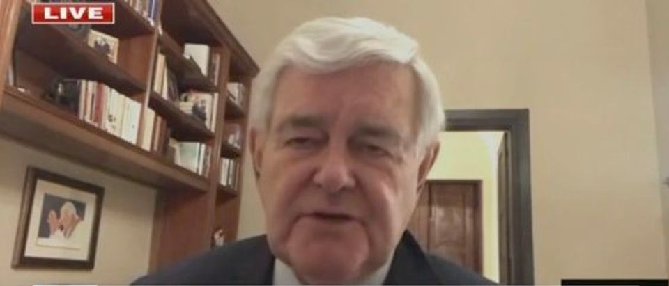 Newt Gingrich on FNC (Screenshot/FNC)
