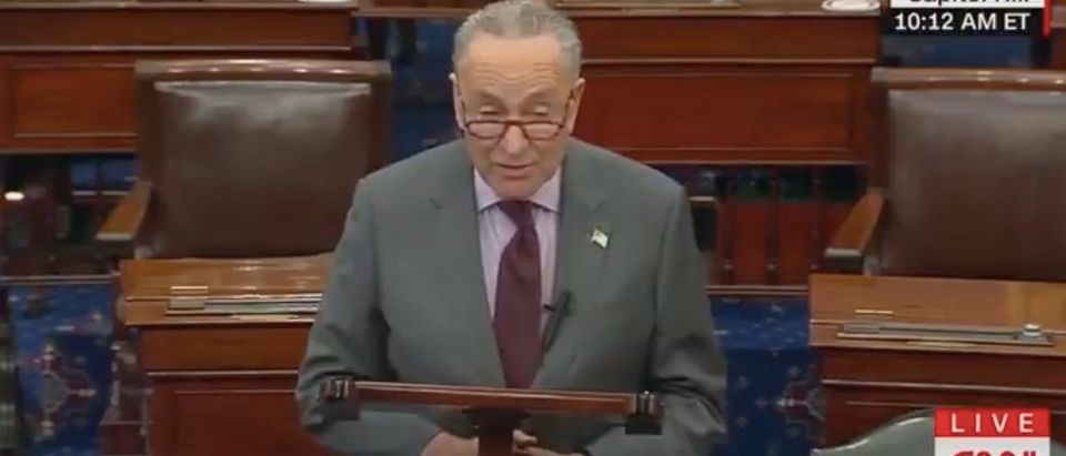 Chuck Schumer speaks on the Senate floor. Screenshot/CNN
