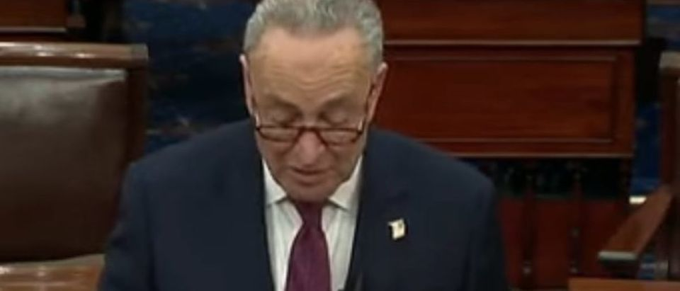 Screen Shot_Youtube_The Hill_Impeachment_Schumer