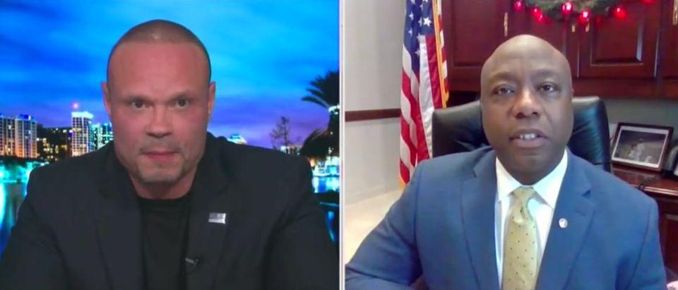 Tim Scott on importance of Georgia runoffs (Fox News screengrab)