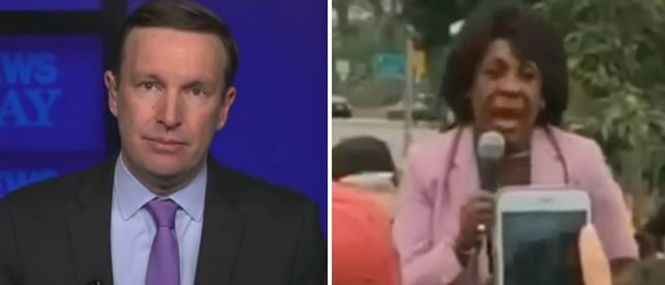 Chris Murphy says 'no comparison' between comments by Democrats and Trump (Fox News screengrab)