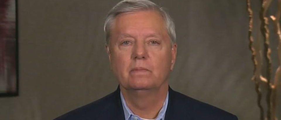 Lindsey Graham calls for end to McConnell, Trump feud (Fox News screengrab)