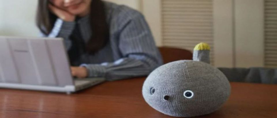Panasonic Nicobo Desktop Robot (Photo Courtesy Panasonic via Nikkei Asia)