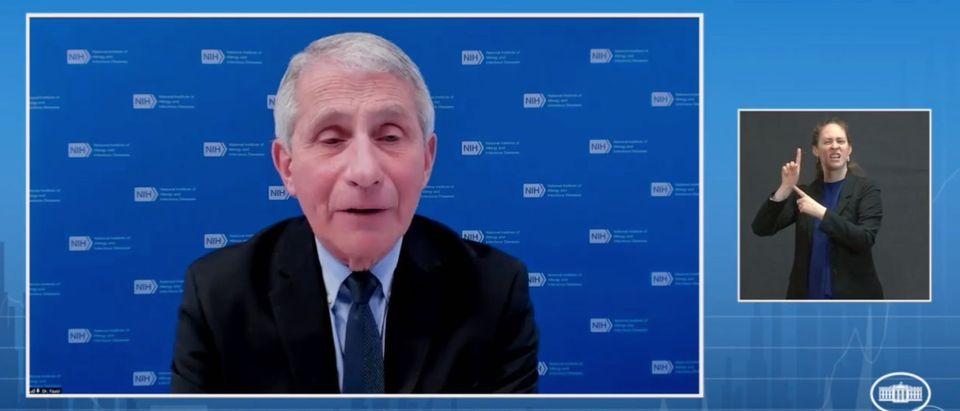 Dr. Anthony Fauci (screenshot, White House YouTube)