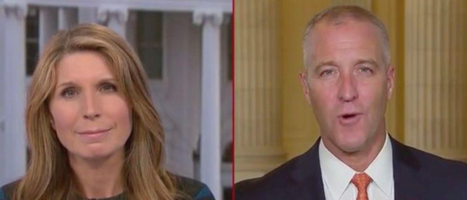 Nicolle Wallace and Rep. Sean Patrick Maloney (Screenshot/MSNBC)