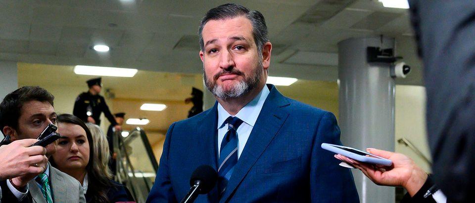 US-POLITICS-Ted Cruz Senator Texas