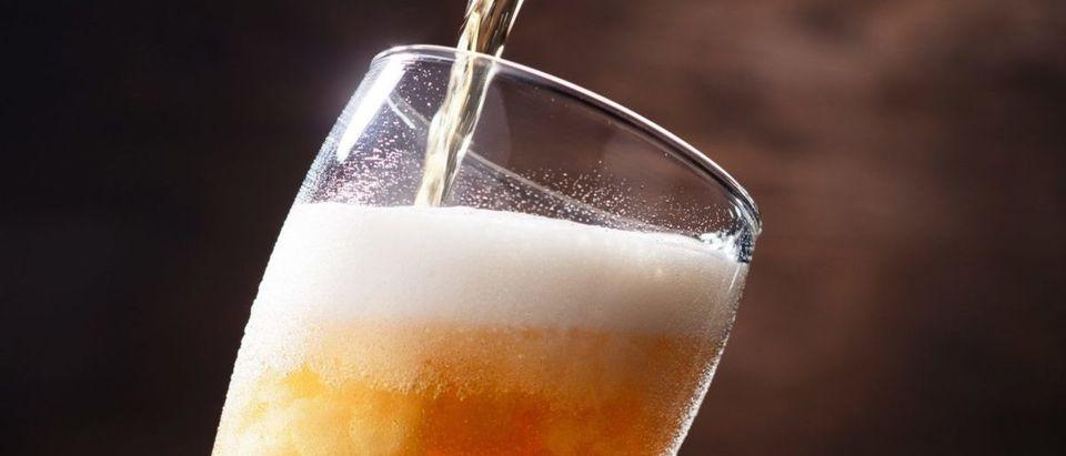 Beer (Credit: Shutterstock/NaturalBox)