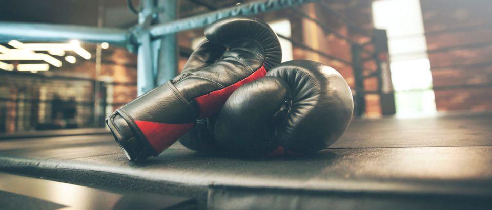 Boxing (Credit: Shutterstock/Tiko Aramyan)