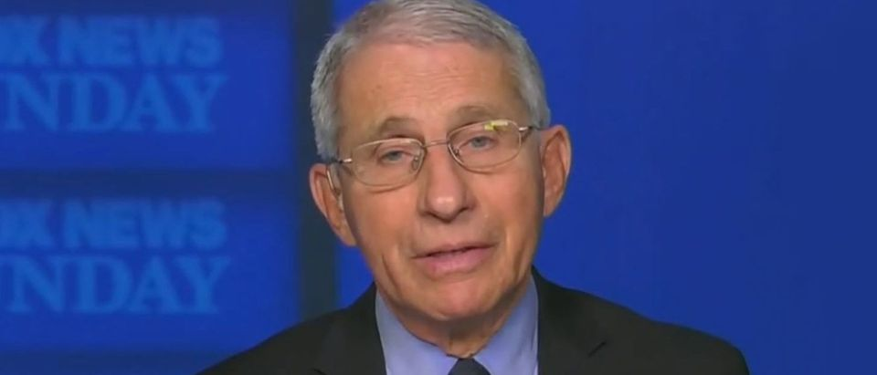 Fauci urges Trump to encourage supporters to get vaccinated (Fox News screengrab)