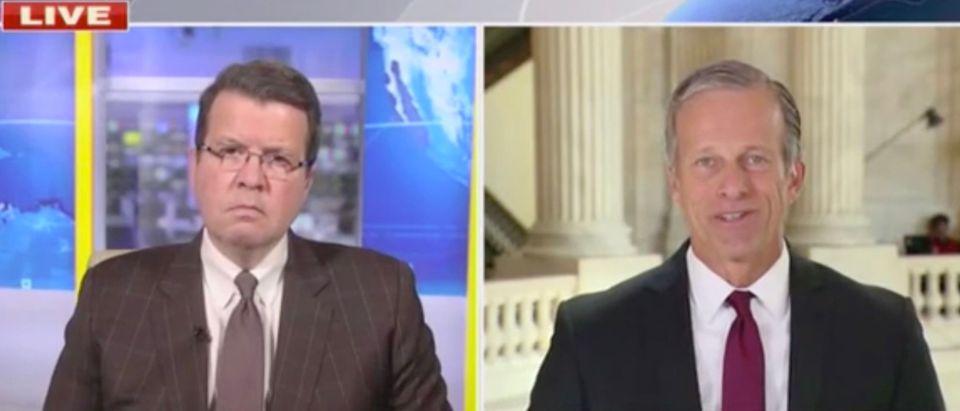 Neil Cavuto and Sen. John Thune Screenshot/Fox News)