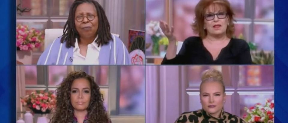 "Whoopi Goldberg, Joy Behar, Sunny Hostin and Meghan McCain host ""The View."" Screenshot/ABC"