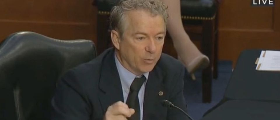 Rand Paul questions Dr. Anthony Fauci in Senate hearing. Screenshot/C-Span