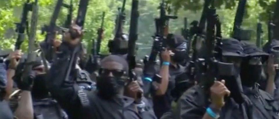 NFAC militia members (Screenshot/MSNBC)