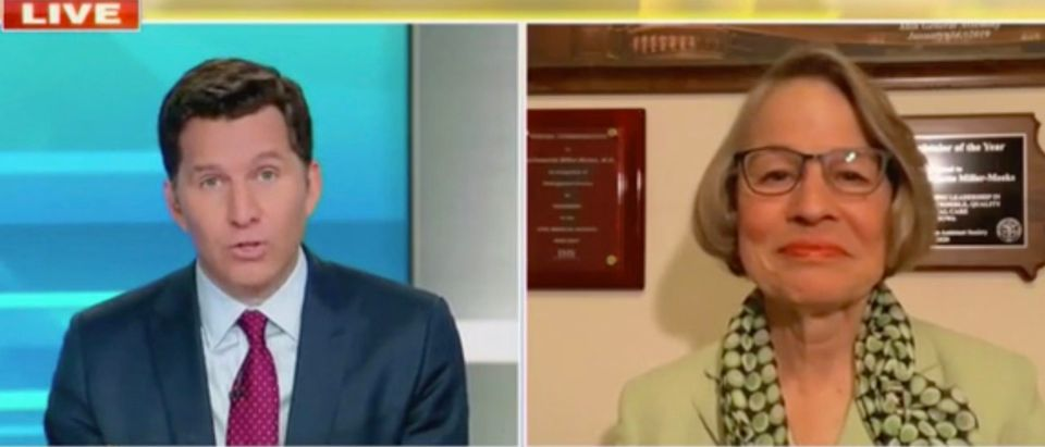 Will Cain and Rep. Mariannette Miller-Meeks (Screenshot/Fox News)