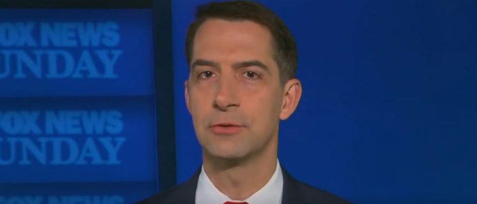 Tom Cotton rips Democrats for filibuster flip flop (Fox News screengrab)