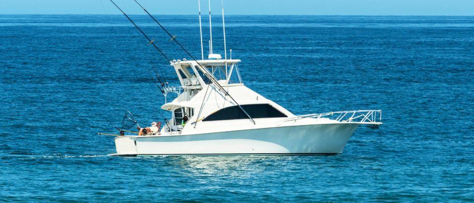 Tuna Fish (Credit: Shutterstock/Al'fred)