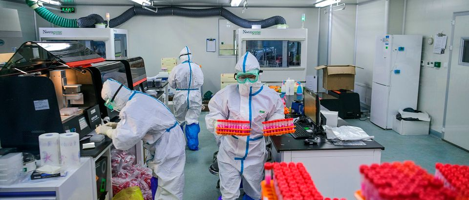 This photo taken on November 23, 2020 shows technicians processing Covid-19 coronavirus tests at a laboratory in Tianjin, China. (STR/CNS/AFP via Getty Images)