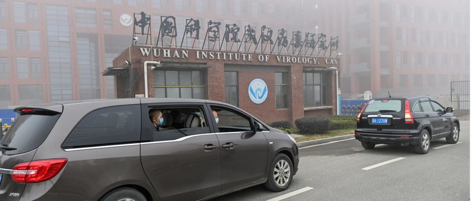 Non-Profit That Funded Wuhan Lab Got Taxpayer Bailout In 2021