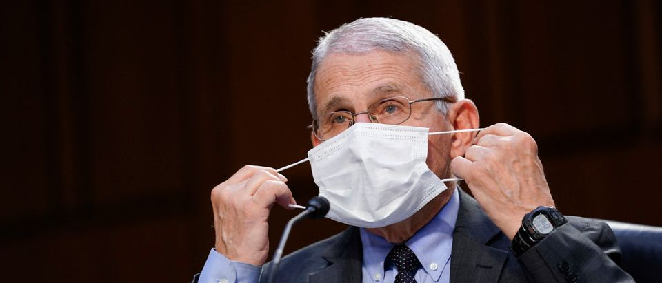 Dr. Fauci Testifies Before Senate Committee On Federal Response To COVID-19(Photo by Susan Walsh-Pool/Getty Images)